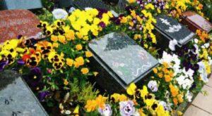 大阪の樹木葬霊園、パークフォレスト堺